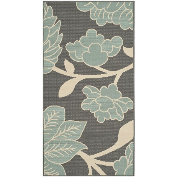 Hampton Grey Plants Outdoor Area Rug by Safavieh