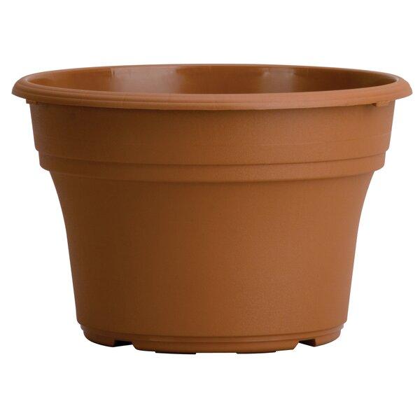 Panterra Ceramic Pot Planter (Set of 12) by Myers/Akro Mills