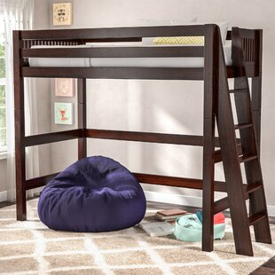 Teen Girl Loft Bed   Wayfair