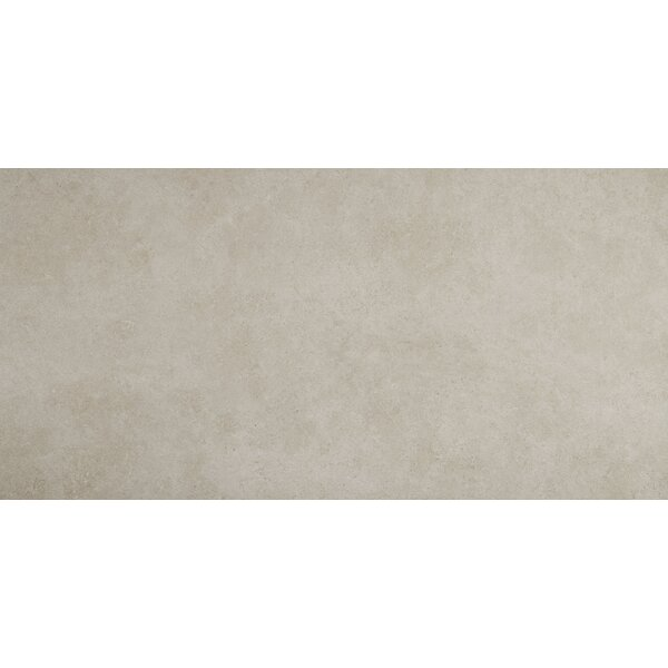 Haut Monde 24 x 48 Porcelain Field Tile in Elite Gray by Daltile