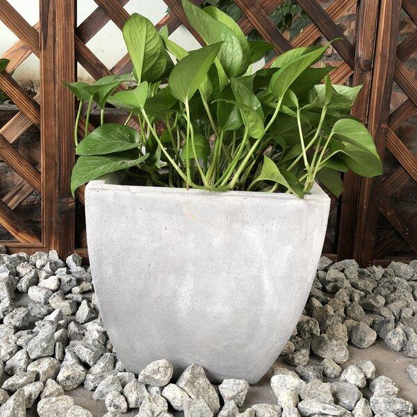 Frey Carve Corner Square Pot Planter by Williston Forge