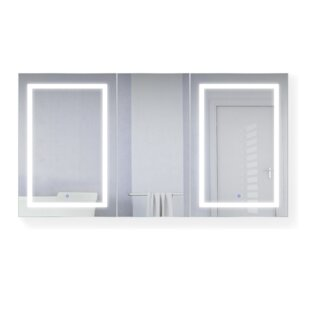 Vannote 66 x 36 Recessed or Surface Mount Medicine Cabinet with 6 Adjustable Shelves and LED Lighting ByOrren Ellis