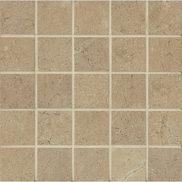 El Dorado 2 x 2 Porcelain Mosaic Tile in Starfish by Grayson Martin