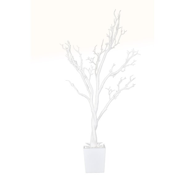 Floor Manzanita Tree in Pot by GT DIRECT CORP