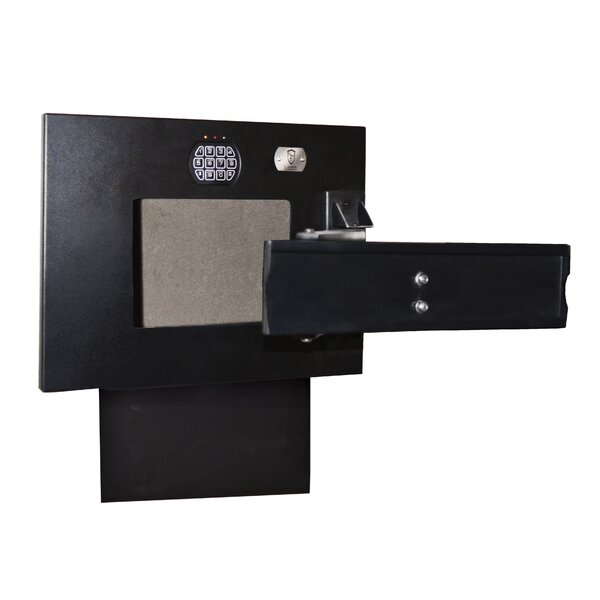Electronic Lock TV Mount Wall Safe by Cannon Security Products