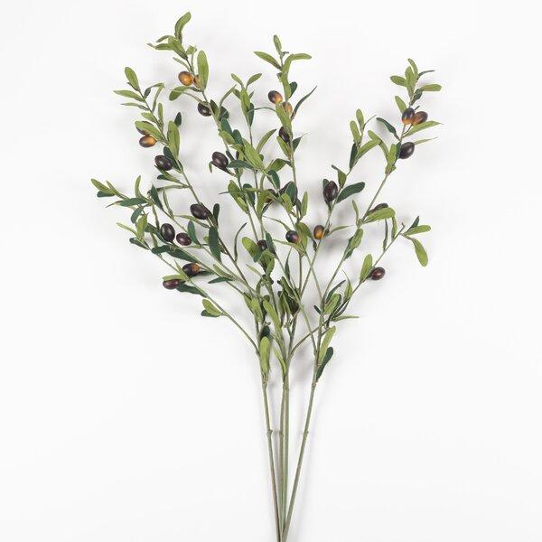 4 Piece Decor Olive Branch (Set of 4) by Fleur De Lis Living