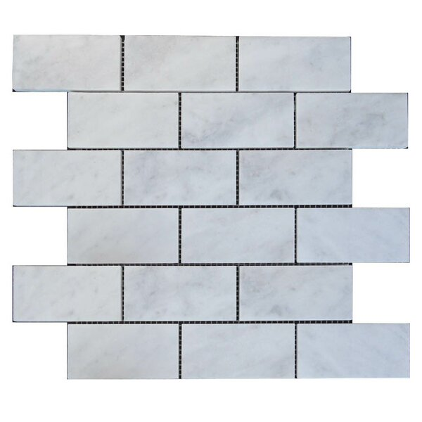 Polished 2 x 4 Natural Stone Mosaic Tile in Lusso Carrara by QDI Surfaces