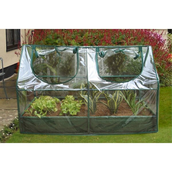 2 Ft. W x 2 Ft. D Mini Greenhouse by Zenport