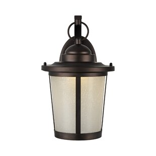 Buy clear Brasher 1-Light Outdoor Wall Lantern By Alcott Hill