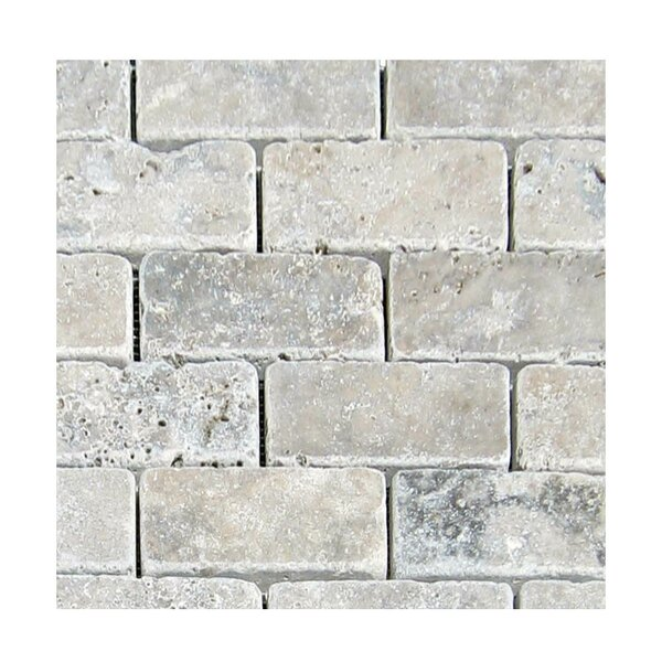 Tumbled 2 x 4 Natural Stone Mosaic Tile in Silver by QDI Surfaces