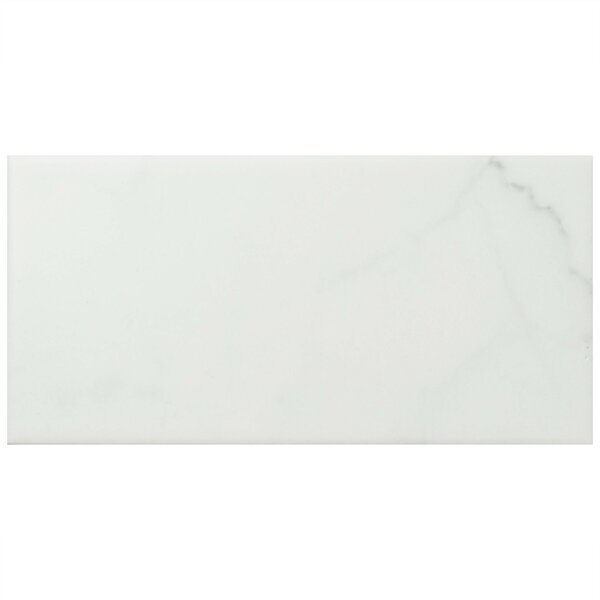Karra Carrara 3 x 6 Ceramic Subway Tile in Matte White/Gray by EliteTile