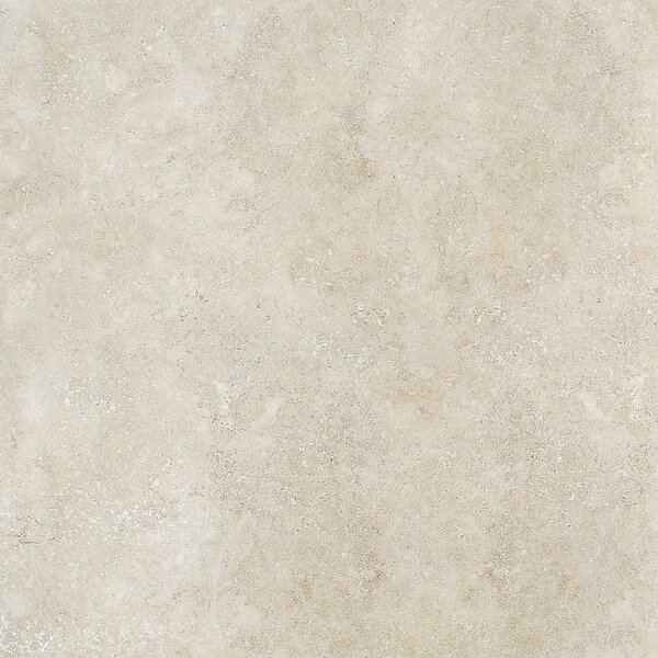 Dolce 18 x 36 Porcelain Field Tile in Malto by Madrid Ceramics