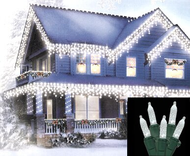 70 Icicle Christmas Light by Vickerman
