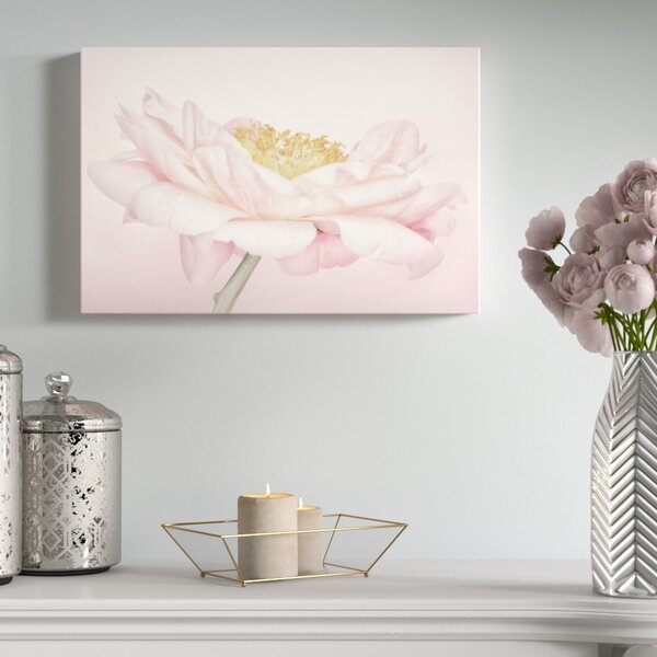 Peony Profile Photographic Print Wrapped by House of Hampton