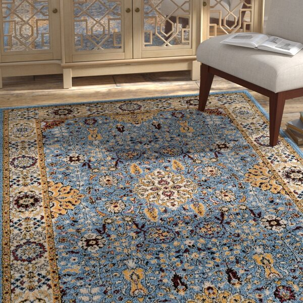 Parrett Transitional Sky Blue Area Rug by Bloomsbury Market