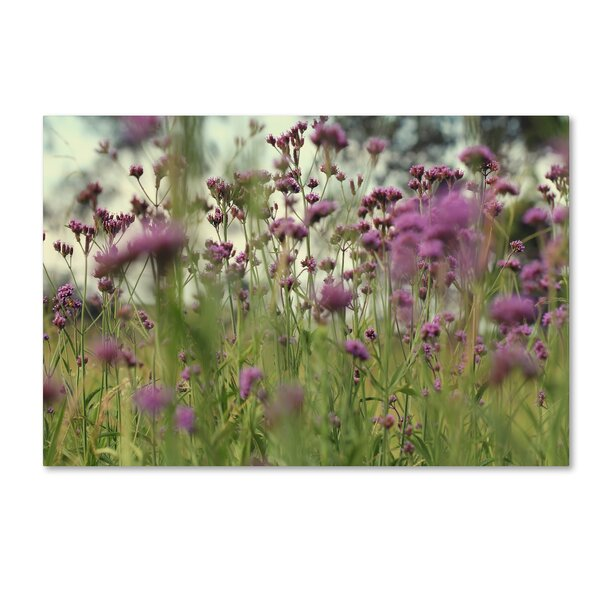 Field of Purple by Beata Czyzowska Young Photographic Print on Wrapped Canvas by Trademark Fine Art