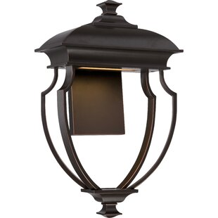 Wightmans 1-Light Outdoor Sconce By Darby Home Co Outdoor Lighting