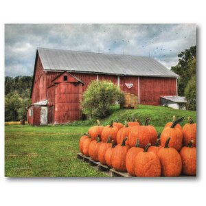 'Pumpkin Barn' Photographic Print on Canvas by August Grove