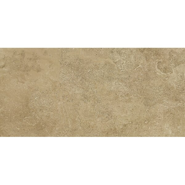 Absolute 18 x 36 Porcelain Field Tile in Nut by Madrid Ceramics