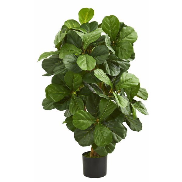 Fiddle Leaf Floor Foliage Tree in Planter by Charlton Home
