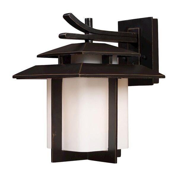 Baily 1-Light Outdoor Wall Lantern by Brayden Studio