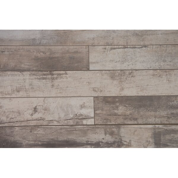 Naples 4 x 48 x 12mm Oak Laminate Flooring in Powder by Branton Flooring Collection