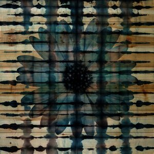 'Cornflower' by Parvez Taj Painting Print on Natural Pine Wood by Parvez Taj
