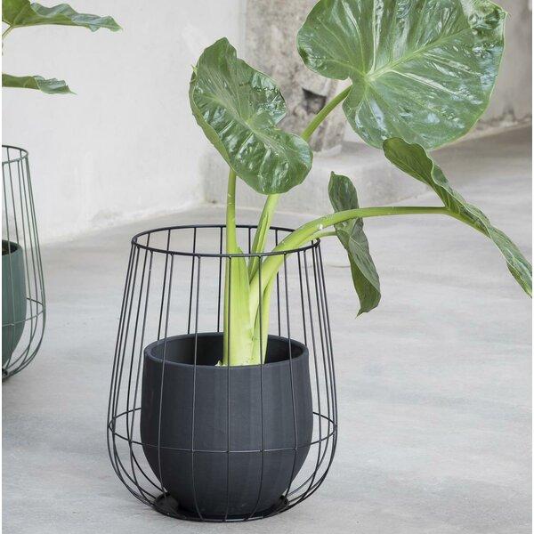 Timothy Metal Pot Planter by Wrought Studio