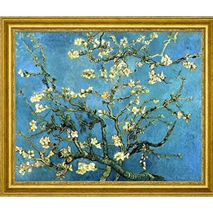 'Branches with Almond Blossom' by Vincent Van Gogh Framed Painting Print by Canvas Art USA