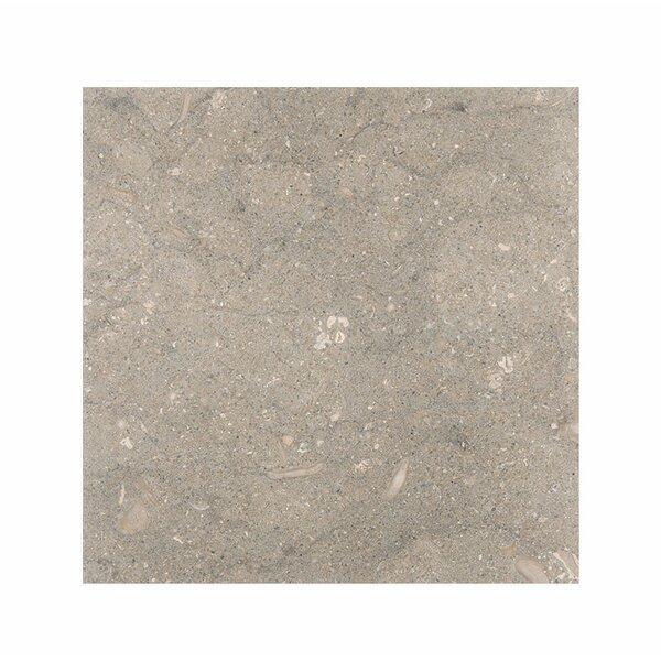 Sea Grass 18 x 18 Limestone Field Tile in Gray by Parvatile