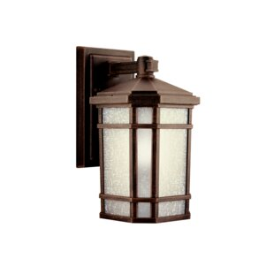 Read Reviews Robles 1-Light Outdoor Wall Lantern By Loon Peak