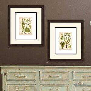 Vintage Leaves 2 Piece Framed Graphic Art Set (Set of 2) by PTM