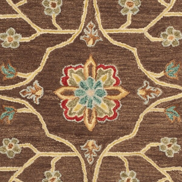 Anatolia Brown/Gold Area Rug by Safavieh