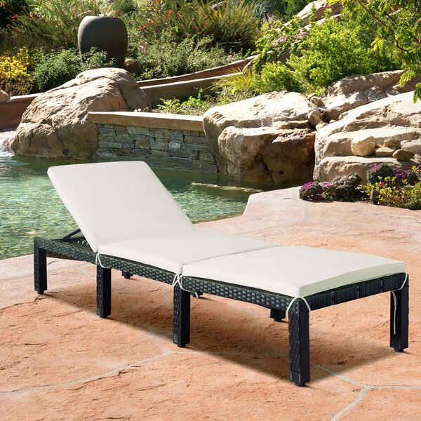 Annexie Chaise Lounge with Cushion