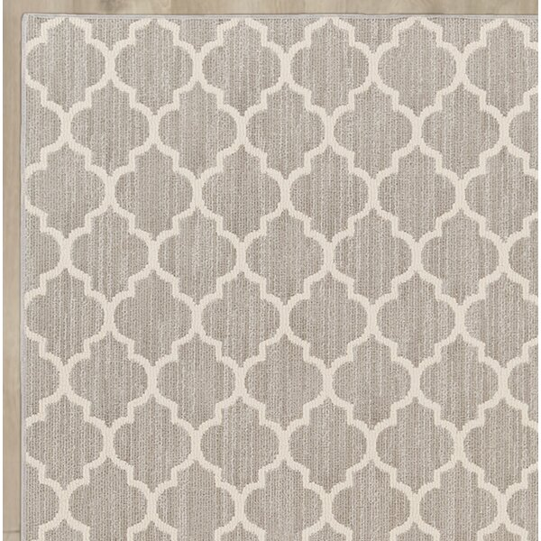 Central Volusia Gray Area Rug by Beachcrest Home