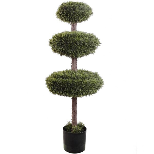 Triple Cedar Topiary in Pot by Larksilk