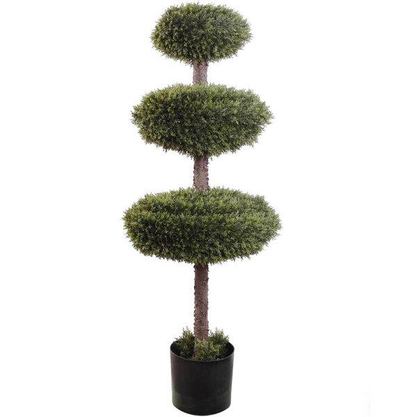 Triple Cedar Topiary in Pot by Larksilk