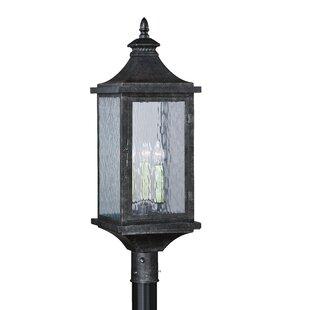 Purchase Wilhelmina Outdoor 3-Light Lantern Head By Darby Home Co