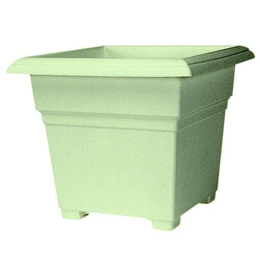 Junior Countryside Patio Tub Sage Plastic Pot Planter by Charlton Home