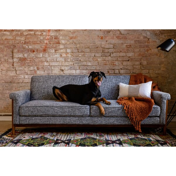 Inexpensive Baird Full 86 Cushion Back Convertible Sofa by Latitude Run