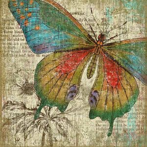 Butterfly 1 by Suzanne Nicoll Graphic Art Plaque by Red Horse Arts