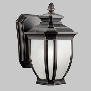 Find for Greenview 1-Light Steel Outdoor Wall Lantern By Three Posts