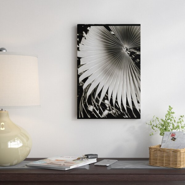 Palm Frond II Photographic Print on Wrapped Canvas by East Urban Home
