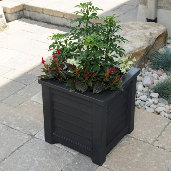 Lakeland Self-Watering Plastic Planter Box by Mayne Inc.