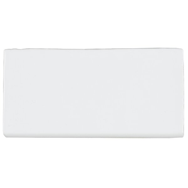 Artigiano 6 x 3 Ceramic Bullnose Tile Trim in Ital