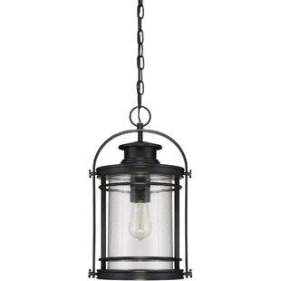 Savings Ashton 1-Light Outdoor Hanging Lantern By Breakwater Bay