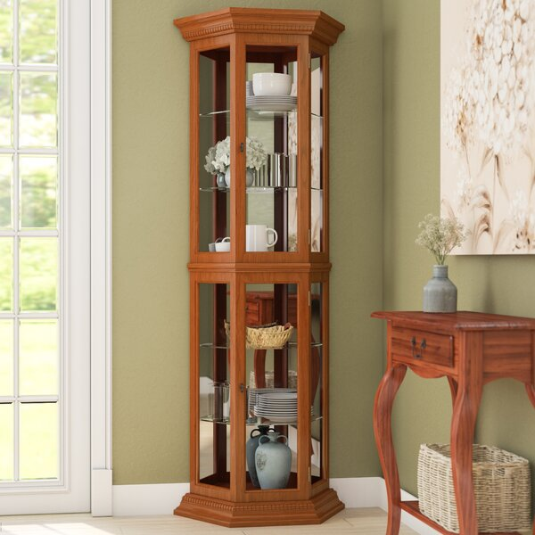 Hollingdon Lighted Curio Cabinet by Three Posts