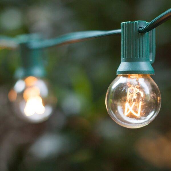 33-Light Globe String Lights by Wintergreen Lighting