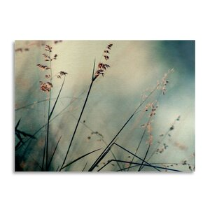 About Hope by Beata Czyzowska Young Photographic Print in Brushed Aluminum by Trademark Fine Art