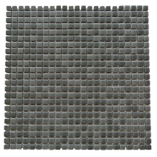 Full Body 0.5 x 0.5 Glass Mosaic Tile in Dark Gray by Abolos